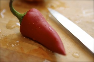 Does this Fresno Chili belong here?