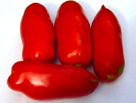 san_marzano_tomato