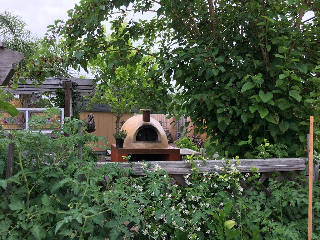 Cream colored stucco Primavera pizza oven peeks out from behind a lattice fence covered in greenery